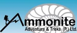 Ammonite Adventures